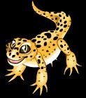 Leopard gecko static