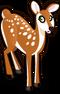White Tailed Deer single