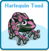 Harlequin toad card