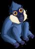 White Cheeked Gibbon single