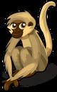 Spider Monkey single