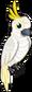 Cockatoo single