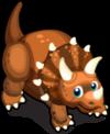 Triceratops single