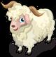Angora Goat single