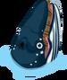 Humpback whale single