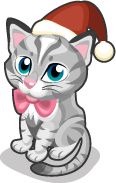 Precious Kitten single