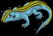 New Mexico Whiptail single