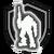 Kit shield regen