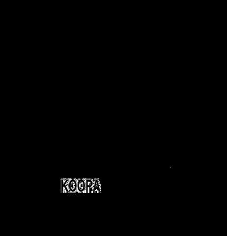 File:KoopaToons print logo.png