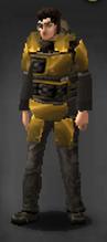 Survivor golden recon