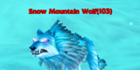 Snow Mountain Wolf