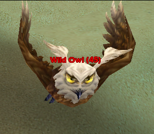 File:Wild Owl.png