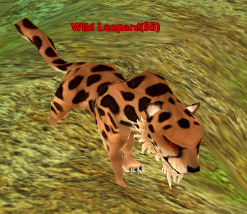 File:Wild Leopard.png