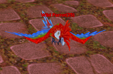 File:Wild Parrot.png