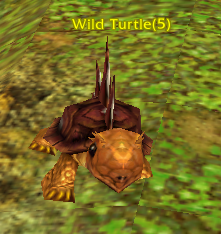 File:Wild Turtle.png