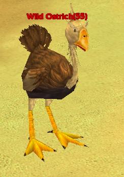 File:Wild Ostrich.png