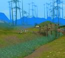 Wild Plains