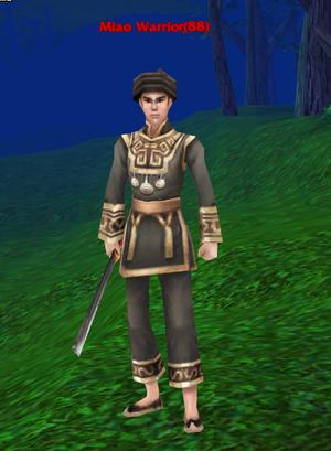 Miao Warrior