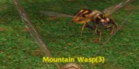 Mountain Wasp