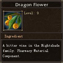 Dragon Flower