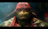 Teenage-mutant-ninja-turtles-gallery-11
