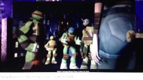 """Super Fast Turtles"" Clip"
