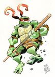 2500608-turtle949