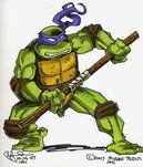 2521018-turtle1394