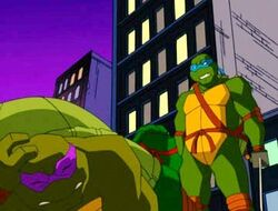Leo,Raph and Don 1