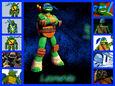 Leonardo collage