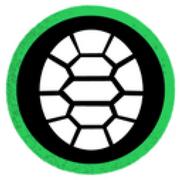 Ninja turtles team