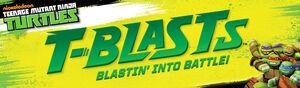 TBlastsHeader