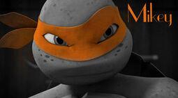 Tmnt mikey orange mask