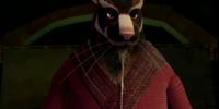 Master Splinter/Gallery