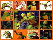 Michelangelo collage -2