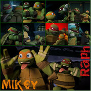 Tmnt raph and mikey collage by culinary alchemist-d6383v4