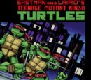 Teenage Mutant Ninja Turtles (Live-action TV series)