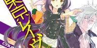 Tokyo Ravens Light Novel Volume 13