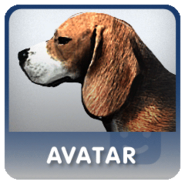 Beagleavatar