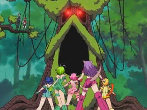 File:Predasite Tree.jpeg