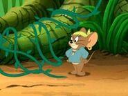 Jerry (11)