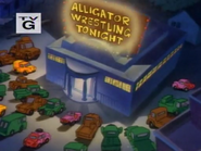 Gator Baiter - Alligator Wrestling Tonight
