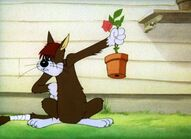 Meathead (Tom and Jerry)