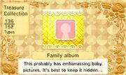 Family Album (US)