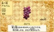 Grapes jp