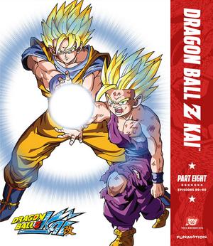 DBZ Kai Cover