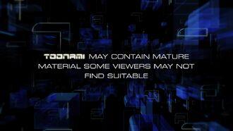 Toonami Disclaimer 2013