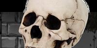 Skelecog 1.0