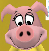 File:Normal pig head with large muzzle.jpg