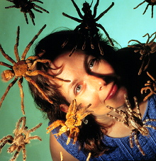File:Fear of spiders.jpg